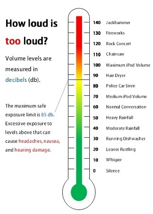 Protect Your Hearing At A Loud Concert?